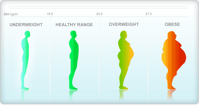 یک روش ابتدایی برای تعیین اندازه چاقی محاسبه شاخص توده بدنی (BMI) است